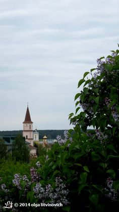 The View to #Ruzhany from the Cemetery Hill.