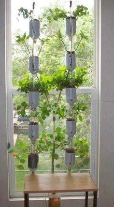 Jardim hidropônico de janela feito com garrafas PET