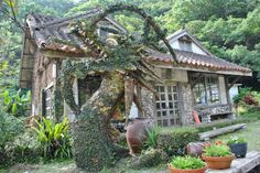 Pottery House in Onna, Okinawa Islands, Japan (by Okinawa Nature Photography).