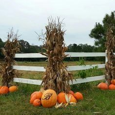 Fall decor !!! This will look great around the posts for our deck!!