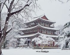 Korea in Winter: A Snow-Covered Buddhist Temple Korea Winter, Japanese Castle, Scenic Photography, Seoul Photography, Seoul Korea, Buddhist Temple, Cheap Travel, Wanderlust Travel, Mexico City