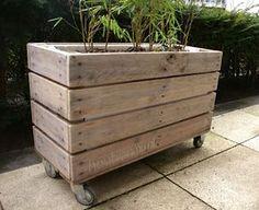 Grote plantenbak van pallethout op wielen, mooi en handig voor zowel op terras als in de huiskamer. De binnenkant is bekleed met tempex. Prijsind. 80 euro.