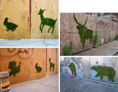 Grass Graffiti