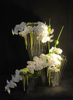 White orchids with branches - 1st - Takapuna Floral Art Club