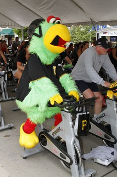 The Pirate Parrot takes part in Pedal for Pirates Charities.