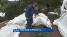 Tips and Tools for Gardening | KXAN.com
