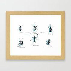 Beetles Framed Art Print