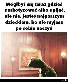 Kermit, Funny Photos, Funny Images, Wtf Funny, Hilarious, Polish Memes, Sad Texts, Funny Mems, I Cant Even