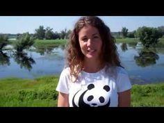Duna - Dráva - Mura sajtókirándulás - Antal Alexa videoblogja Make It Yourself, T Shirts For Women, Blog, Dune