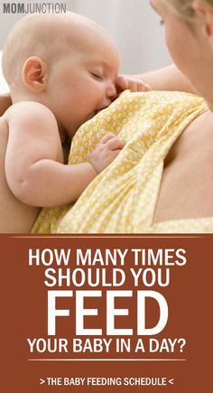Are you worried whether your newborn is getting enough nutrition or not? Whether you are breast feeding or bottle feeding your baby, it is natural for you to have many doubts regarding how many times you must feed your baby.Read more ..........!