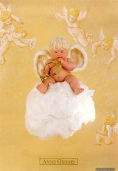 anne geddes angel pictures - Bing Images