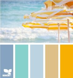 beachy color combos. For bathroom, the blue at the end and the green for trim.