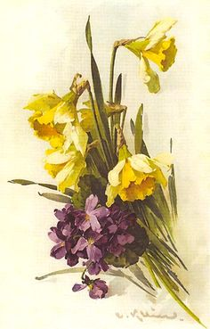 Daffodils and Violets by C.Klein