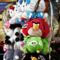 Angry Bird :-)