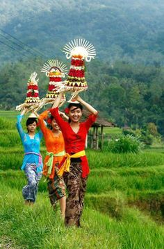 So fantastic beauty of Bali Island Indonesia We Are The World, People Around The World, Around The Worlds, Laos, Vietnam, Borneo, Taj Mahal, Voyage Bali, Thinking Day