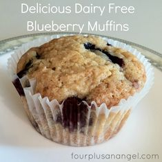 Casein Free Blueberry Muffins-couod adapt for dogs x Dairy Free Deserts, Dairy Free Recipes For Kids, Lactose Free Recipes, Non Dairy Desserts, Children Recipes, Gluten Free, Healthy Recipes, Dairy Free Blueberry Muffin Recipe, Dairy Free Muffins