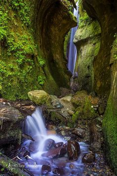 The hidden Sombrio waterfall, Vancouver Island, BC by Michael Leonard**