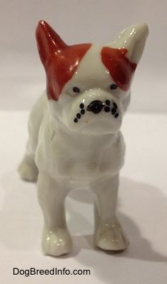 Vintage hand painted bone china French Bulldog figurine. Front view.