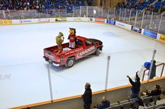 Canadore Night at the Battalion Game!