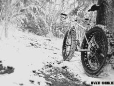 FAT-BIKE.COM | A Resource for Fans of FatBikes!