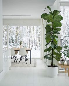 Minimal home in Finland Minimalism Interior, Home And Living, Decor, House Interior, Simple Christmas Decor, Home Living Room, Home, Interior, Home Decor