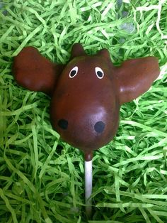 Moose cake pops