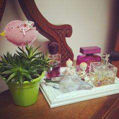 Mhilka Diniz #jardinagem #jardim #DIY #succulents #cacti #cactus #suculentas #bandeja