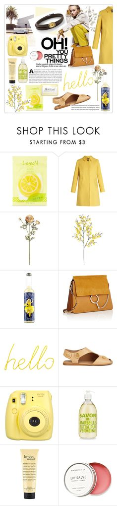 """Pretty Things"" by nomination ❤ liked on Polyvore featuring Forever 21, Weekend Max Mara, Chloé, Block, STELLA McCARTNEY, Fujifilm, Birchrose + Co., Florapy, jewels and nominationitaly"
