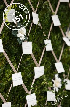 Fabulous Idea No. 151: Forego a traditional place card table for a quilted live wall laden with fresh greens, ribbons and fresh blooms.