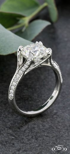 Elegant Platinum Diamond Melee Engagement Ring. Green Lake Jewelry