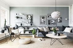 Scandinavian living room-black and white pictures of Mister in different poses instead