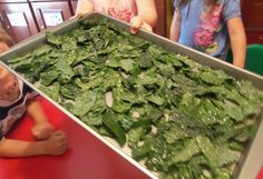 Kale chips~fun and healthy snack kids can participate in making. Tear up kale, put in a ziploc bag and shake with olive oil to lightly cover the leaves. Arrange in a single layer on a baking sheet, sprinkle with sea salt and bake @ 350 for 8-10 minutes. The kids ate them all in one sitting.