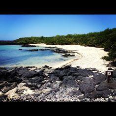 Galapagos Islands en Archipiélago de Galápagos