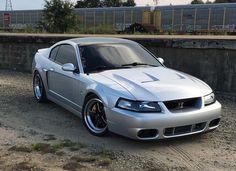 Mustang Cobra, Ford Mustang, New Edge Mustang, Mustang Emblem, Gt 500, Memoria Ram, Bmw M4, Ford Motor Company, Mustangs