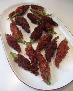Sumac fruit heads
