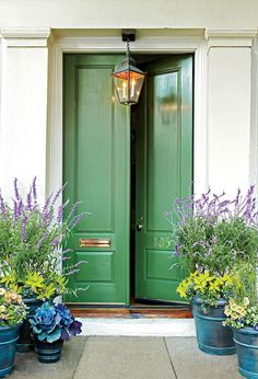 Kelly green door and gorgeous pots!- Kelly green door and gorgeous pots! Kelly green door and gorgeous pots!- Kelly green door and gorgeous pots! Kelly green door and gorgeous pots! Front Porch Plants, Front Door Planters, Front Porches, Porch Planter, Porch Bench, Outdoor Planters, Planters Shade, Porch Garden, Shade Plants