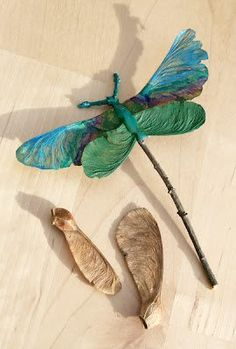 What an easy idea for the kids or even adults!!! ..... using maple seeds pods and twigs from the garden to make a dragon fly..