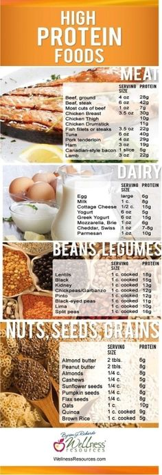 Looking to up your protein intake? Here's a list of foods that are high in protein! healthy