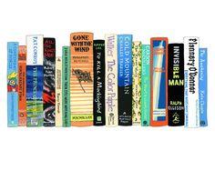 Ideal Bookshelf 771p: Southern Lit - Ideal Bookshelf