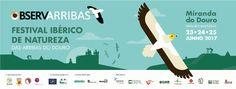 Cartaz do Festival