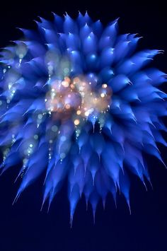 Focus Blur Fireworks by Chase Schiefer on 500px