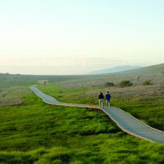 Dog friendly - Cambria, CA: Hike with your dog at Fiscalini Ranch Preserve (bluff trail on-leash; others off-leash)