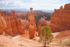 Hiking in Bryce Canyon National Park will always be famous! Learn more about some of the best hikes in the Bryce Canyon area.