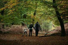 A family enjoying a stroll through the New Forest National Park www.newforestnpa.gov.uk/walking_festival