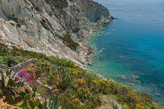 mare e vegetazione dell'Isola di Ponza