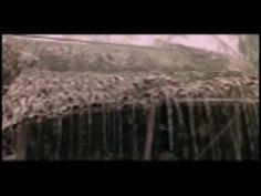 Crying in the Rain - Art Garfunkel - YouTube