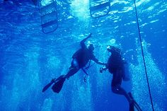 【沖縄おすすめ情報】 沖縄体験ダイビング