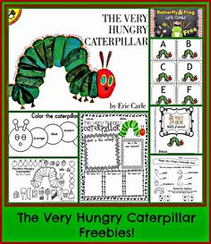 Kindergarten: Holding Hands and Sticking Together: Eric Carle and LOTS OF… Hungry Caterpillar Activities, Very Hungry Caterpillar, Kindergarten Reading, Kindergarten Classroom, Classroom Ideas, Preschool Books, Preschool Crafts, Author Studies, Book Study