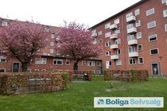 Aurikelvej 6, 2. th., 2000 Frederiksberg - 4V Frederiksberg-lejlighed med skovudsigt #frederiksberg #andel #andelsbolig #andelslejlighed #selvsalg #boligsalg
