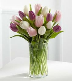 Bouquet Tulipa